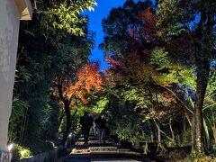 向かいの高台寺へ行ってみます。 この坂道の雰囲気がいいんですよね(^^)