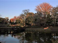 文庫の森公園もかつて肥後熊本藩細川家の下屋敷でした