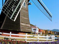 ハウステンボスに戻って来て オランダと言えば風車ということでこちらをうろうろ。 中の見学もできます。