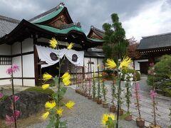 式台玄関。  菊の鉢植えが並びます。