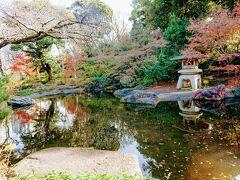 保土ヶ谷から国道1号沿いを東に進み、約15分。 最初にやって来たのは、戸部にある掃部山公園です。 井伊家の明治期の別荘があったところです。 さくらが綺麗な公園ですが、公園の日本庭園は秋はもみじが綺麗です。 北向斜面なのでちょっと暗いのが残念。