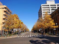 続いては、横浜公園の東側にある、日本大通りにやって来ました。