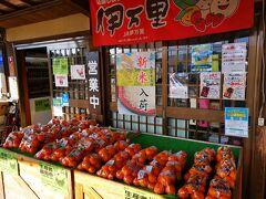 翌日は朝から道の駅伊万里に立ち寄り。 大きいみかんが沢山入って250円という感動価格。