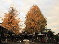 正覚寺のイチョウの黄葉