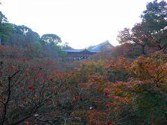 さて、翌日は朝7時半からの東福寺の早朝特別拝観へ。  まずは臥雲橋からの眺め。やはり先週が最高だったようです。