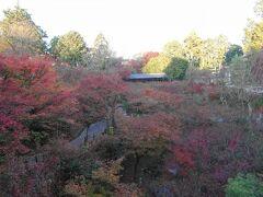 通天橋から見た臥雲橋。  紅葉の季節、通常の観覧では通天橋上での写真撮影は禁止ですが、人数を絞り込んだ早朝先行特別拝観のみ、撮影可能なのです。