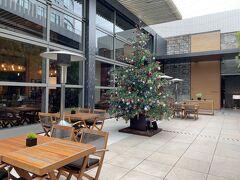 東京・六本木『Grand Hyatt Tokyo』6F  『グランド ハイアット 東京』の【ステーキハウス オーク ドア】 前にあるクリスマスツリーの写真。  この前、友達と【オーク ドア】でランチをしました。  上質な食材の魅力とシェフの腕が織りなす極上のグリル料理を ニューワールドワインとともにご堪能ください。 優雅な午後のひと時にはアフタヌーンティーも ご用意しております。 活気に満ちたオープンキッチン、落ち着いたブース席、 四季折々の表情を見せる人気のテラス席、 大切な会合に最適な個室、 都会の夜を満喫できるバーなど、 スタイリッシュな空間でお楽しみください。
