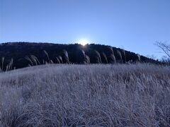9:38 仙石原すすき草原到着 う~ん、幻想的!まだ尾根から太陽が出ていない 仙石原の名称は源頼朝さんがつけたらしい
