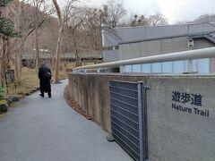14:05 冬の遊歩道は誰も歩いていません そのうえ、小鳥のさえずりさえ聞こえない… https://www.polamuseum.or.jp/nature/