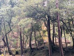 そこから数分で 見えてきました! 「苔寺」