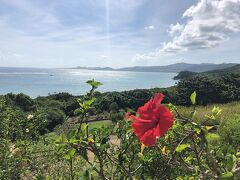 次に来たのが、玉取崎(たまとりざき)展望台です。  展望台までの道中に、南国の美しい花々が見られます。