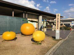 瀬戸田町観光案内所 レモンとオレンジ