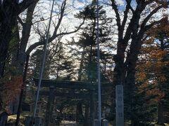 幸せのきのこ駐車場に車を入れて、 すぐにある諏訪神社にやってきました。