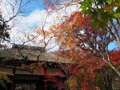 嵯峨野でモミジといったらやはりここは外せない 常寂光寺に到着