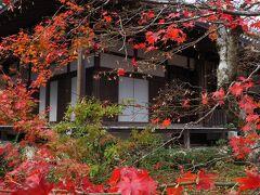 小倉山の中腹に建つ常寂光寺 カエデの木が多く、この時期は境内が真っ赤に染まります。