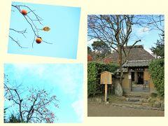 嵯峨野の定番コース巡りよろしく、次は落柿舎  初めて訪れたという夫は建物などいろいろ撮っていましたが、クッシーは柿を撮って満足(笑)