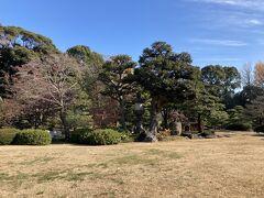 江戸時代に、下総国関宿の藩主・久世大和守の下屋敷になり、その頃にある程度庭園が形づくられて、明治時代にも整備が進められ、今の形になった、という少し複雑な歴史のある庭園のようです。