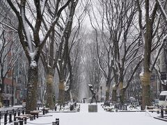 定禅寺通まできました~ 雪がきれい(*´Д`)  仙台の雪はたまりません。