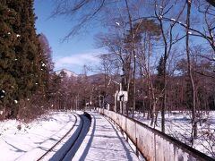 途中の「塔のへつり」で下車。 初めて降り立ちましたが、森にたたずむ駅なんですね~。