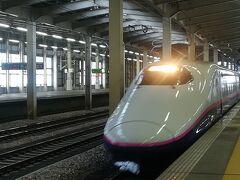 時間的に現美新幹線にも乗れる時間帯だったんですけど...残念ながら現美新幹線は1週間前に廃止に。本当に残念。最後に乗りたかったなぁ。名残惜しく新幹線で帰路につきました。〈終〉