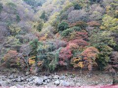 予約した座席が山側だったのであまり保津川の景色を見られなかったのは残念だった
