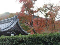 天龍寺はスルーして、「宝厳院」も生垣越しに見るだけにして