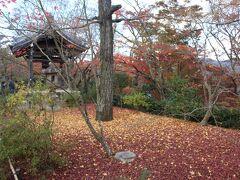 再び竹林の道を通って戻り「常寂光寺」へ。本堂前は既に落葉していたが、散り紅葉に覆われているのもまた美しい。