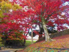 バスで熊ヶ根橋まで行き、そこから徒歩で仙台市青葉区熊ヶ根の青下水源地に着きました。