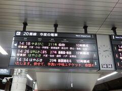 しばらくは車で仙台に行っていましたから、久しぶりの新幹線利用です。 上野駅14時26分発はやぶさ27号に乗ります。