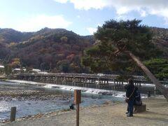 11月下旬の連休時に大混雑と報道されていた 渡月橋も週日の今日は観光客はまばらでした。 秋晴れの良いお天気で桂川沿いの散歩は快適です。
