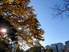 池のある紅葉スポットに行きたくなって、上野から日比谷公園ならまぁ近いかなと思って移動。