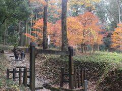 天龍寺の近くには、明智一族の城だった明智城跡があります。 紅葉の残る大手門。