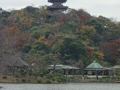 三溪園に入ると大きな池と三重塔が目に飛び込んでくる