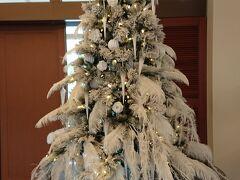 タラソレセプションのクリスマスツリーは雪山の木のよう。 顔見知りのスタッフさんに、お久しぶりですとご挨拶。