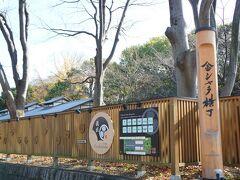 名古屋城の正門に近い方の金シャチ横丁は義直ゾーンです。 今回は義直ゾーンでランチ。