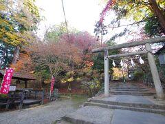 とりあえず猫たちに会えて満足したので、一応観光もします。この唐沢山の城跡にあるのが唐沢山神社です。