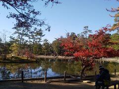 鏡池の前ではお父さんと息子さんが 寄り添うようにしてベンチに座って日向ぼっこを していました。 コロナなんかに負けず幸せな日が続きますように。