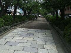 若宮大路の改修工事前だった段葛(だんかずら)を歩いて