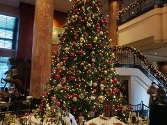 ロビー階へ到着すると、どーんと大きなクリスマスツリー( ≧∀≦)ノ かわいい!キレイ!! ですが、まずはチェックインへ。