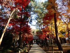 平林寺 入り口の門をくぐり