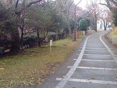 さて、赤羽緑道公園に来ました。