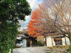 そこから歩いて10分くらいで、目的地の龍安寺へ。  紅葉はとっくに終わっていたけど、ちょっとだけ色づく木々が見られて嬉しい。
