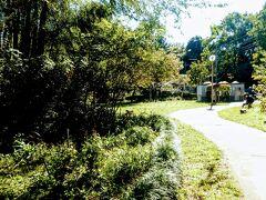 南沢水辺公園をとおります。
