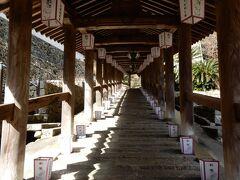 399段続く登廊   山にある長谷寺は階段を上って本堂まで上がります    お正月に、元旦に人のいない登廊が撮れるなんて   本当にまさかまさかの驚きです