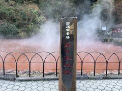 最後の7ヵ所目は「血の池地獄」。赤い大きな池です。久々に楽しい地獄めぐりでした。