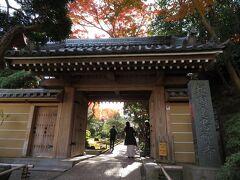 竹の庭で有名な報国寺へ。竹の庭は拝観料(300円)が必要だが、竹の庭以外の境内は無料で拝観できる。