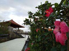 展望台へ向かう園路にはハイビスカスが咲き、赤瓦の三角屋根を擁した展望台と調和の取れた景観になっています。