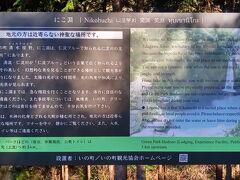 松山駅前からレンタカーを借りて、 「にこ淵」へ。  Googleでは1時間半くらいだったのに、 なんやかんやで2時間半かかった。。