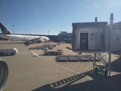 長い空の旅を終えて、定刻より7分早く羽田空港到着。