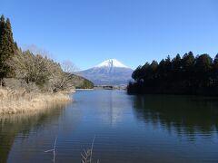 元日の朝、列車とバスを乗り継いで、まずは静岡県の田貫湖畔にやって来ました。富士山が見えました♪